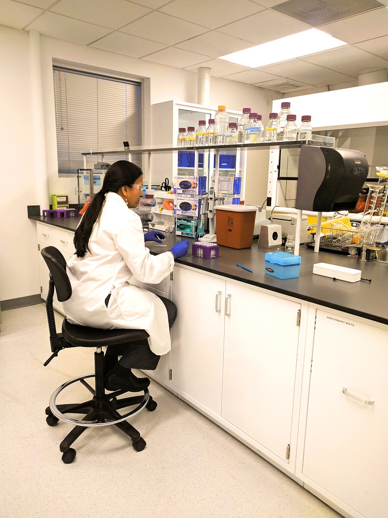 Mitra_microsampling_in_the_lab-1