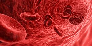 microscopic view of blood cells traveling through a vein
