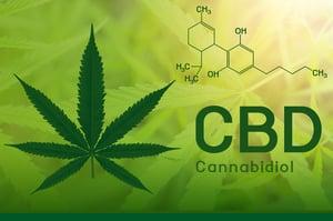 cannabis-testing-mitra