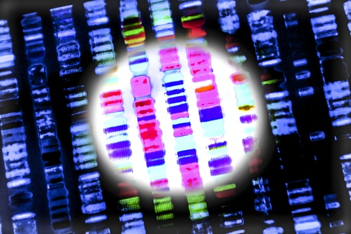 A Brief Introduction to Next Generation Sequencing